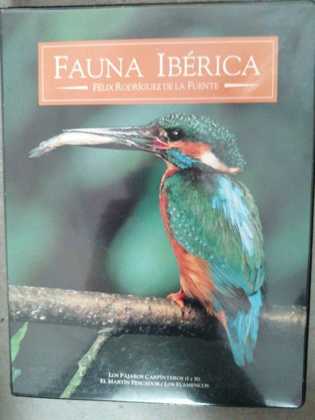 Colección Félix Rodríguez de la Fuente