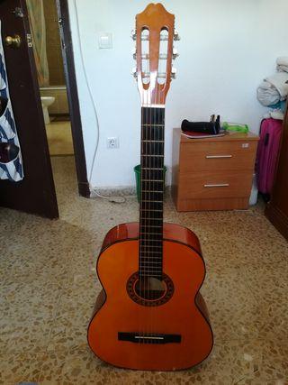 guitarra rocio n10