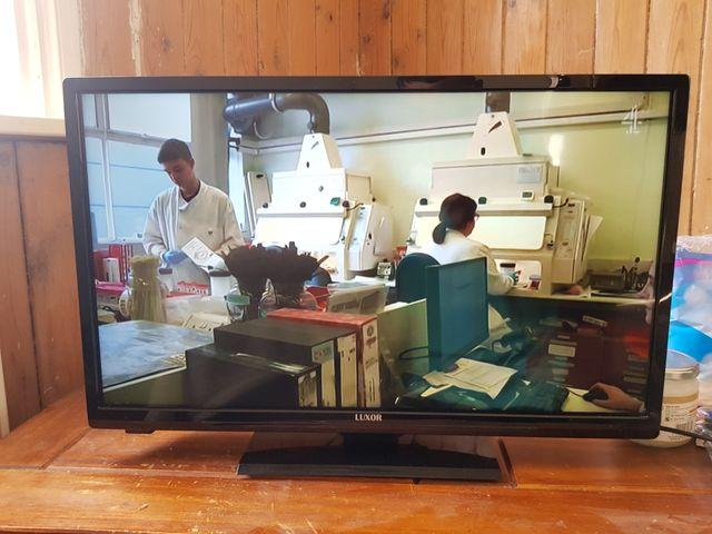 Luxor 24 inch Smart tv