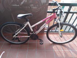 Bicicleta Femenina
