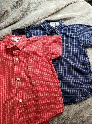 Camisa niño Lacoste