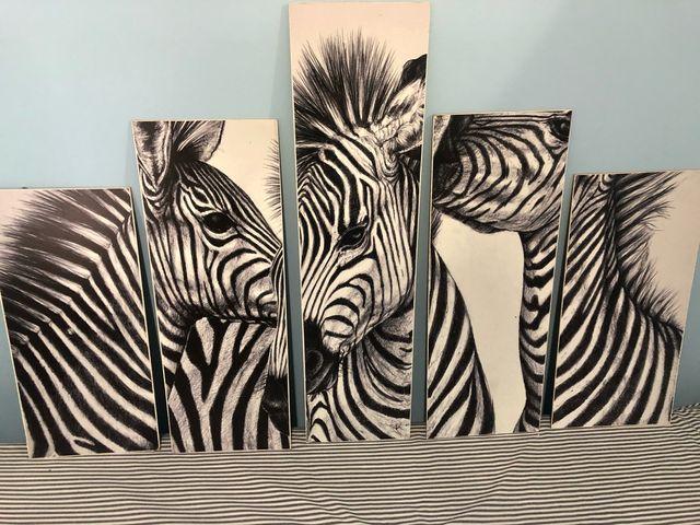 Cuadros cebras