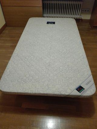colchón dorsal comodon más base Dorsal 105X200