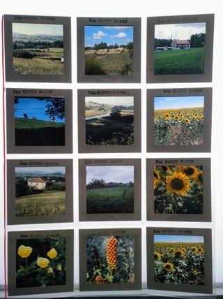 12 diapositivas medio formato / Manuel Martín
