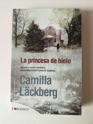 Novela La princesa de hielo