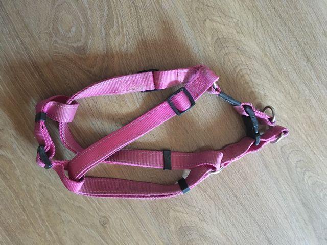 Arnés perro rosa