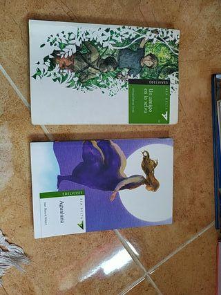 Libros castellano de secundaria