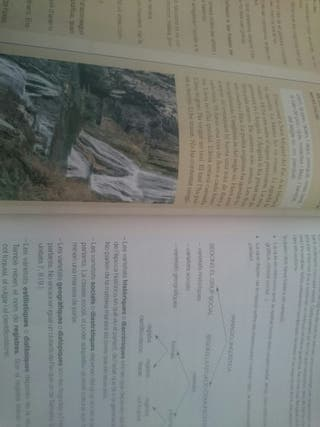 libro llengua catalana i literatura 4 eso