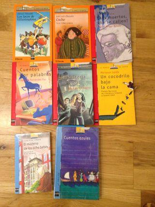 Lote libros SM