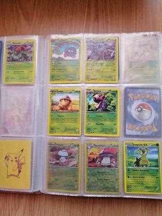 Cartas Pokémon 219