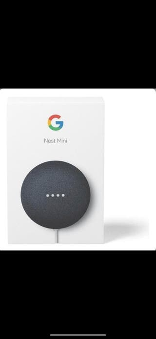 Google nest negro