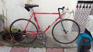 bicicleta Zeus 4002