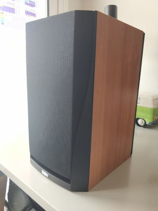 altavoces bowers and Wilkins dm302
