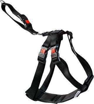 Arnés de Seguridad Coche Perro, 35-50 cm, Talla S