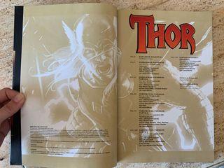 Thor 2 : Días de Trueno Panini Comics