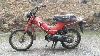 honda PX 49cc