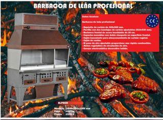 BARBACOA DE LEÑA PROFESIONAL