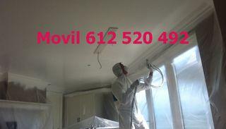 Pintamos azulejos bañera pisos chalet puertas