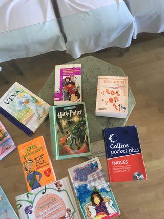 Lote libros, diccionarios inglés, valenciano,