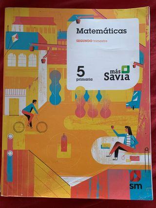 Libro de Matemáticas. Curso 5° Primaria. SM.
