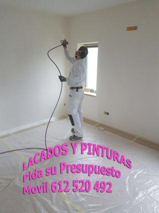 SERVICIOS PINTURAS PISOS CHALET LOCAL NAVES GARAJE