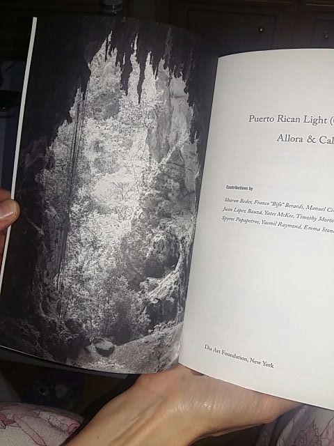 Puerto Rican Light