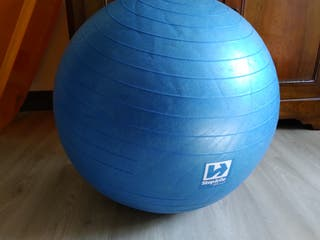 Gym Ball (Step&go)