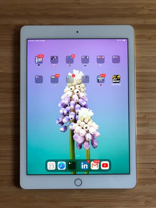 iPad Air 2 Gold 64Gb + REGALO