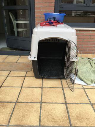 Transportín para perro IATA