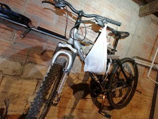 bicicleta adulto infantil