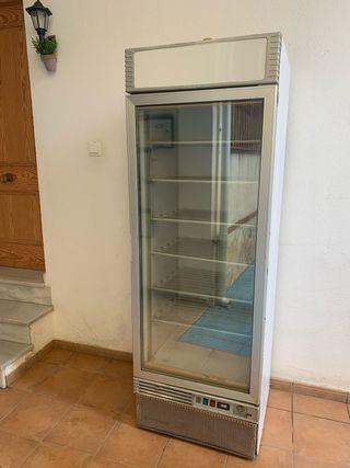 Congelador vertical vitrina de helados