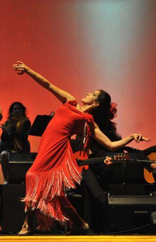Clases de baile Flamenco On-Line (skype)