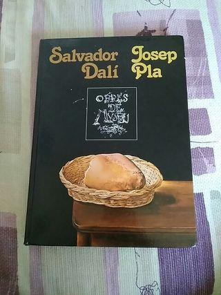 libro Salvador Dalí y Josep plan obres de museu