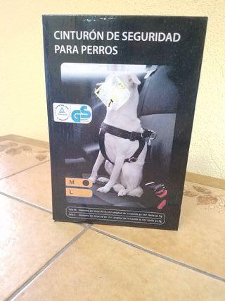 cinturón de seguridad para perros.