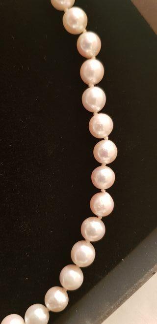 Perlas de cultivo