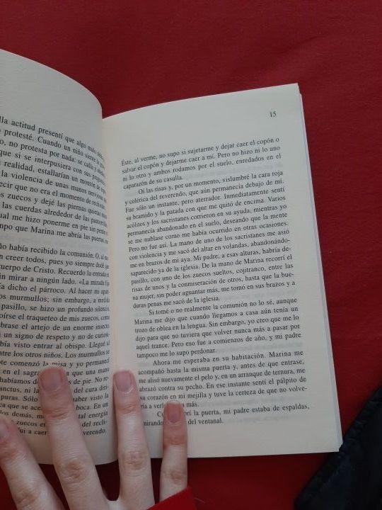 libro el misterio Velázquez