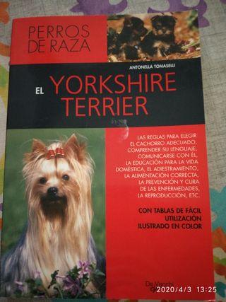 Libro Yorkshire terrier