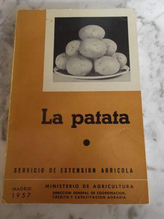 """Libro antiguo """"La patata"""". 1957. Mº Agricultura."""