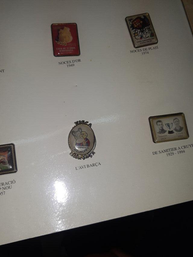 Pins historics