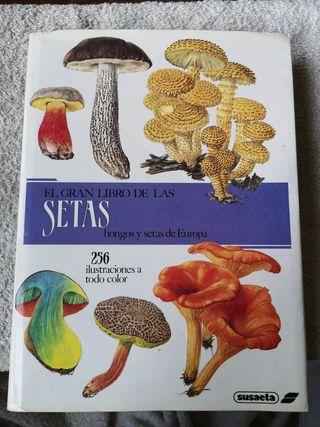 Libro El gran Libro de las Setas 1989