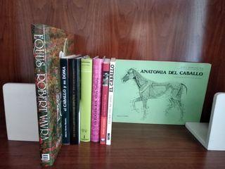 Libros variados sobre equitación