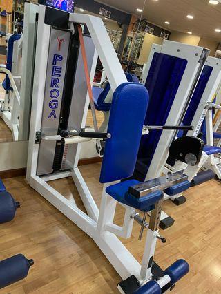 Máquina fondos pecho tríceps