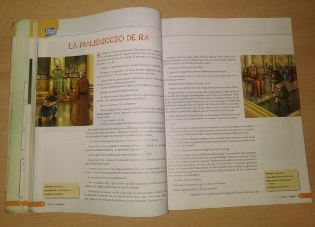Libro Llengua Catalana i lit. Ginesta