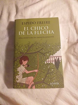 El chico de la flecha - Espido Freire