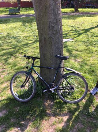 Bicycle (giant bicycle)