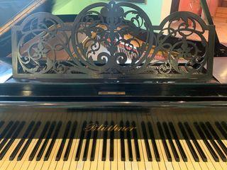 EXCLUSIVO PIANO DE COLA BLUTHNER