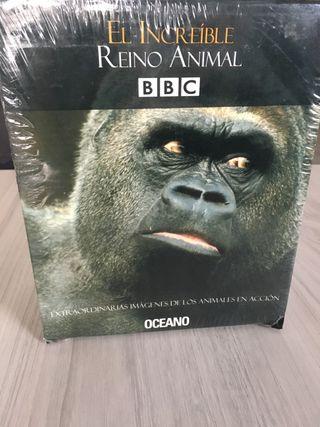 DVD reino animal