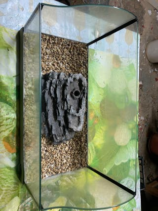 Terrario o Tortuguera con material para vegetacion