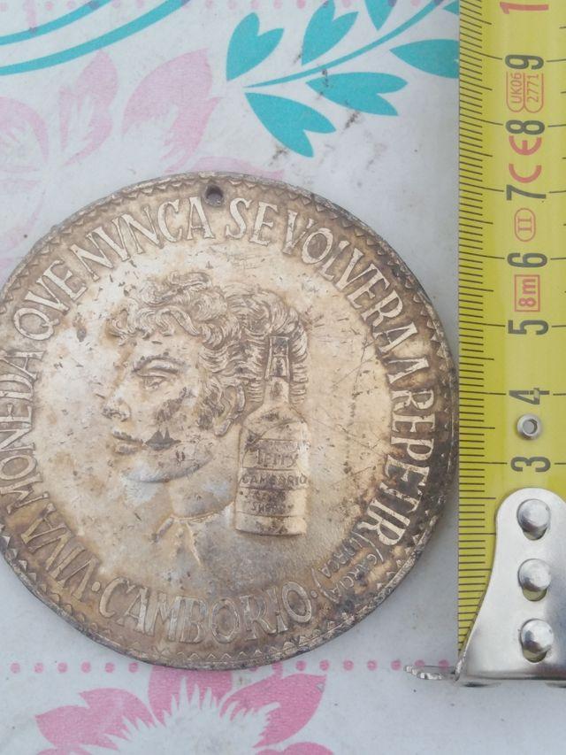 medalla de Terry