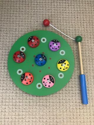 Ladybird magnetic game
